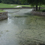 Water Hazard Before#7 Quail HollowCharlotte, NC